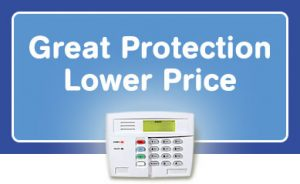 Great Protection Lower Price